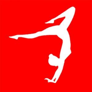 BAS-Gym-Logo2.jpg
